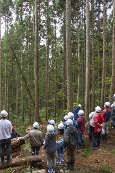東北大学の学生が三島町で森林伐採現場を見学しました