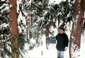 雪の中の間伐確認