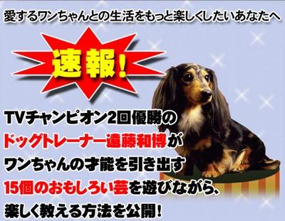 愛犬と楽しく遊ぶ!遠藤和博の犬の芸講座ハッピーDOG
