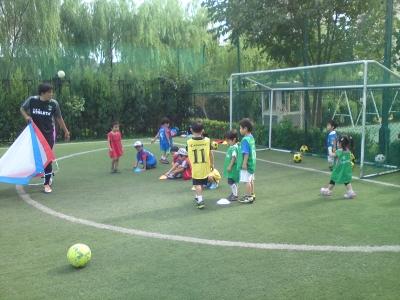 soccer 0812_5