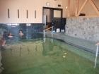 ホテル白馬五竜の内風呂