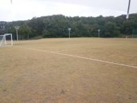 アルビンスポーツパークの天然芝グラウンド