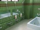昭和の森フォレストビレッジの浴室