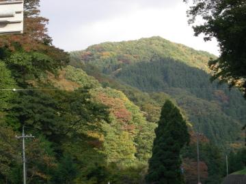 三徳山紅葉