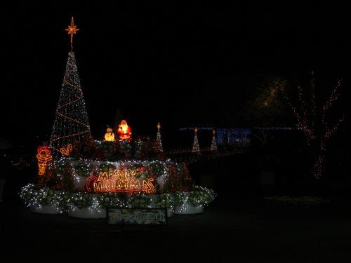 クリスマス花回廊