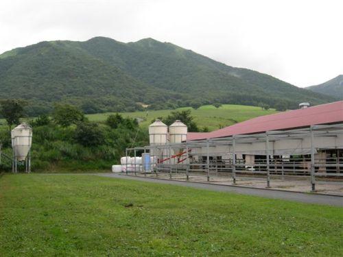 育成牧場からの風景