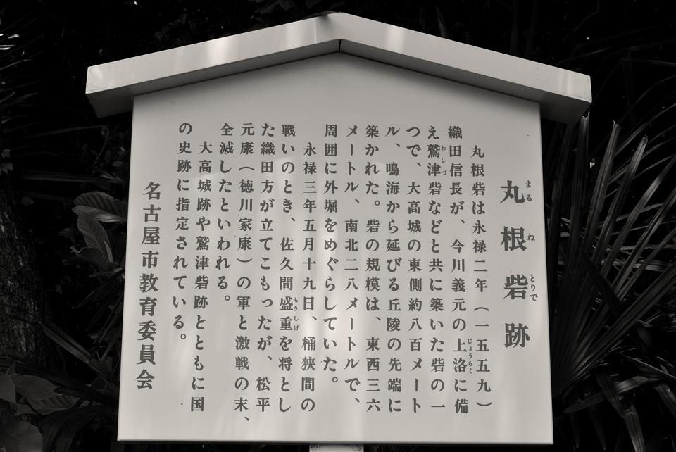 otakajo-run_004.jpg