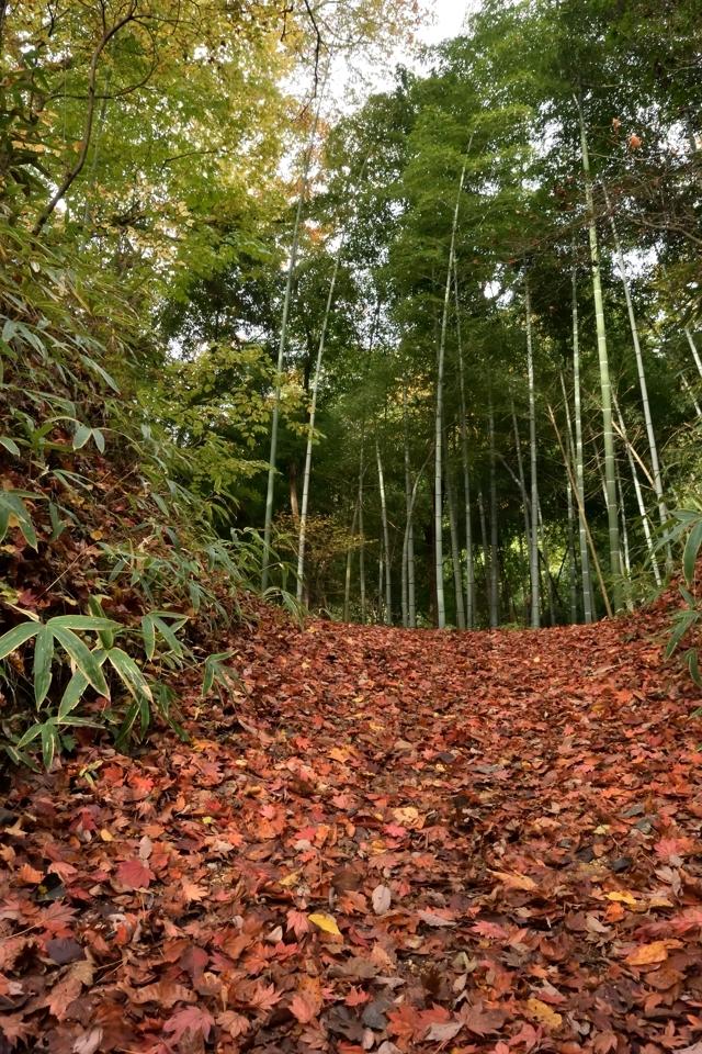 tsumago-magome_5.jpg