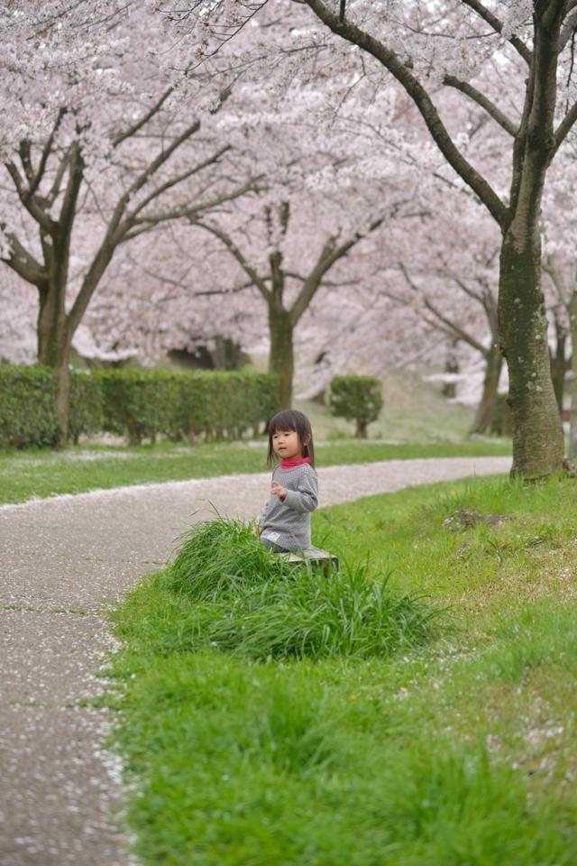 3.9sai_4.jpg