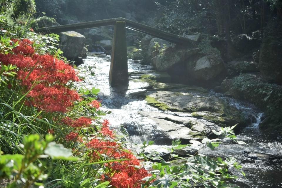 トレイルランコース愛知県2.jpg