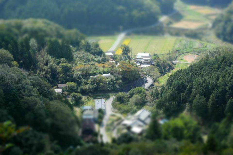 トレイルランコース愛知県11.jpg