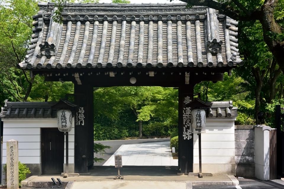 京都一周トレイル_東山コース6.jpg