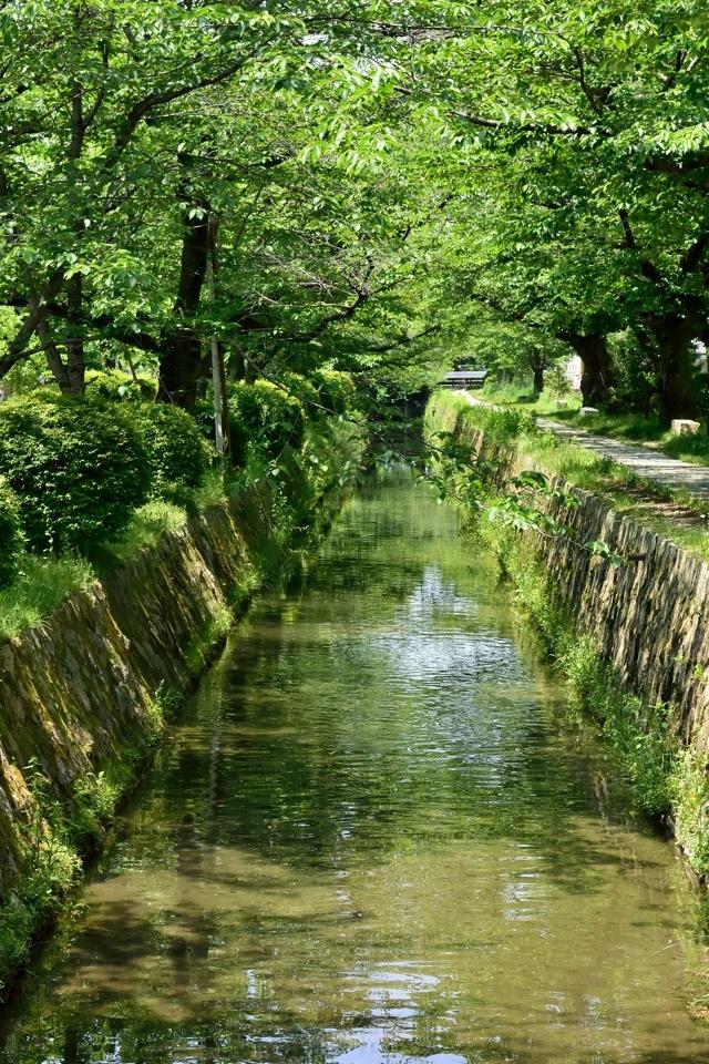 京都一周トレイル_東山コース15.jpg