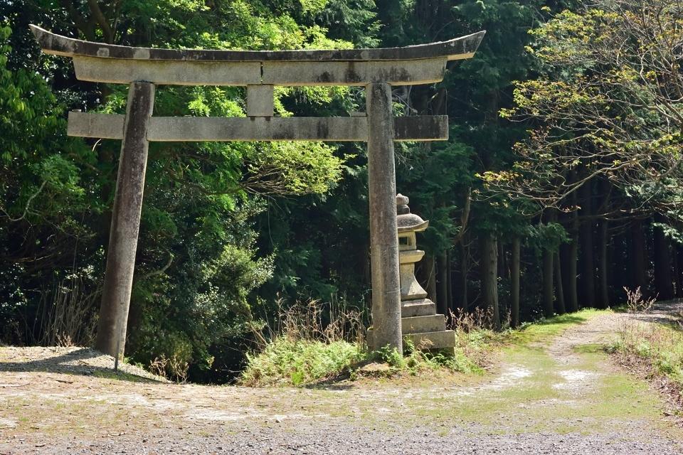 京都一周トレイル_東山コース16.jpg