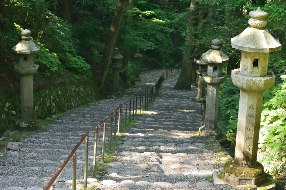 京都一周トレイル_北山コース2.jpg