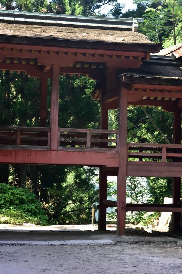 京都一周トレイル_北山コース4.jpg