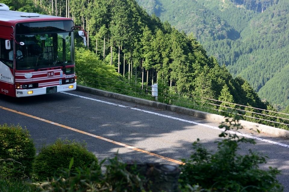 京都一周トレイル_北山コース6.jpg
