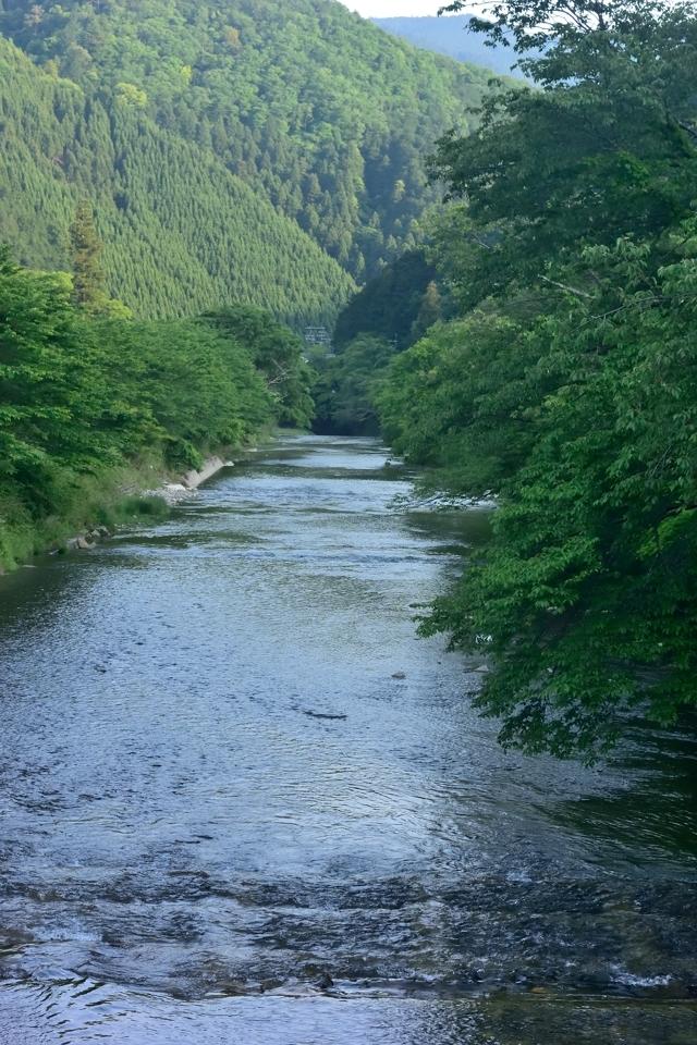 京都一周トレイル_北山コース14.jpg