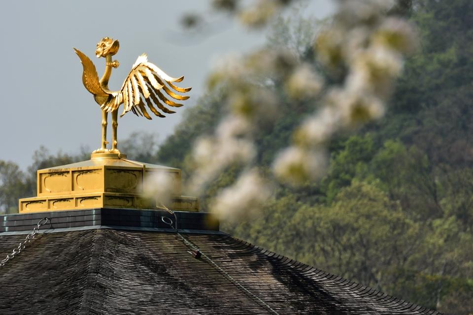 金閣寺画像3.jpg