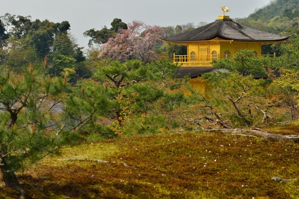 金閣寺画像8.jpg