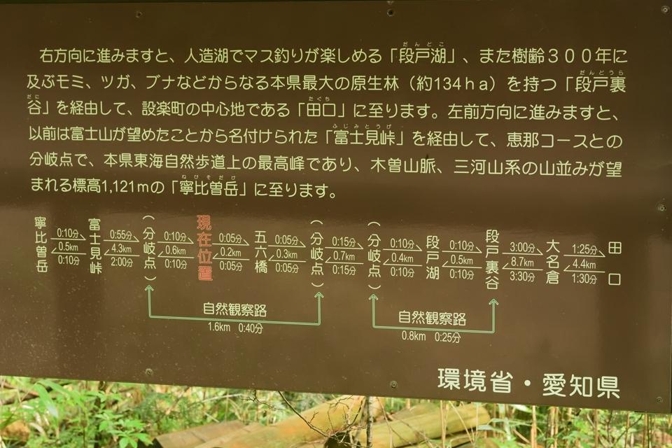 豊田トレランコース5.jpg