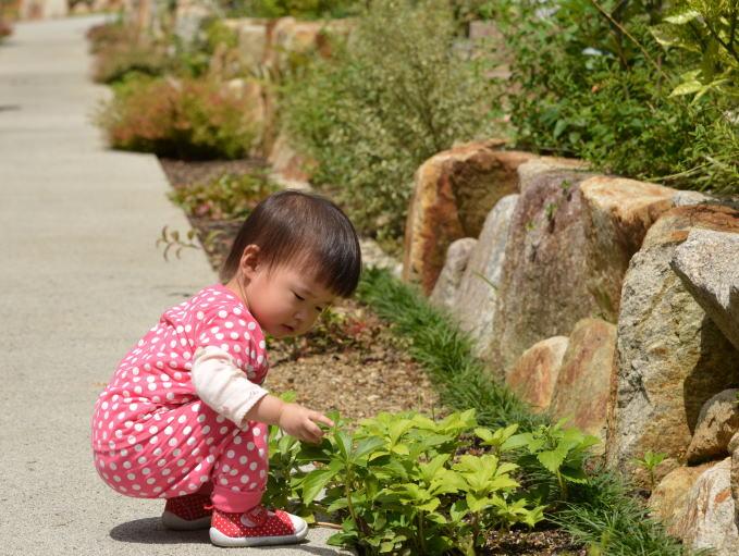 赤ちゃん 1歳11か月5.jpg