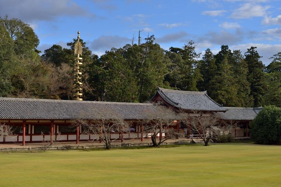 奈良公園散策写真2.jpg