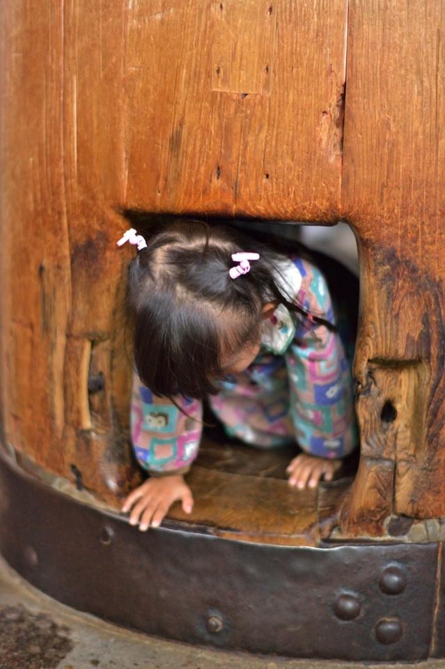 奈良公園散策写真5.jpg