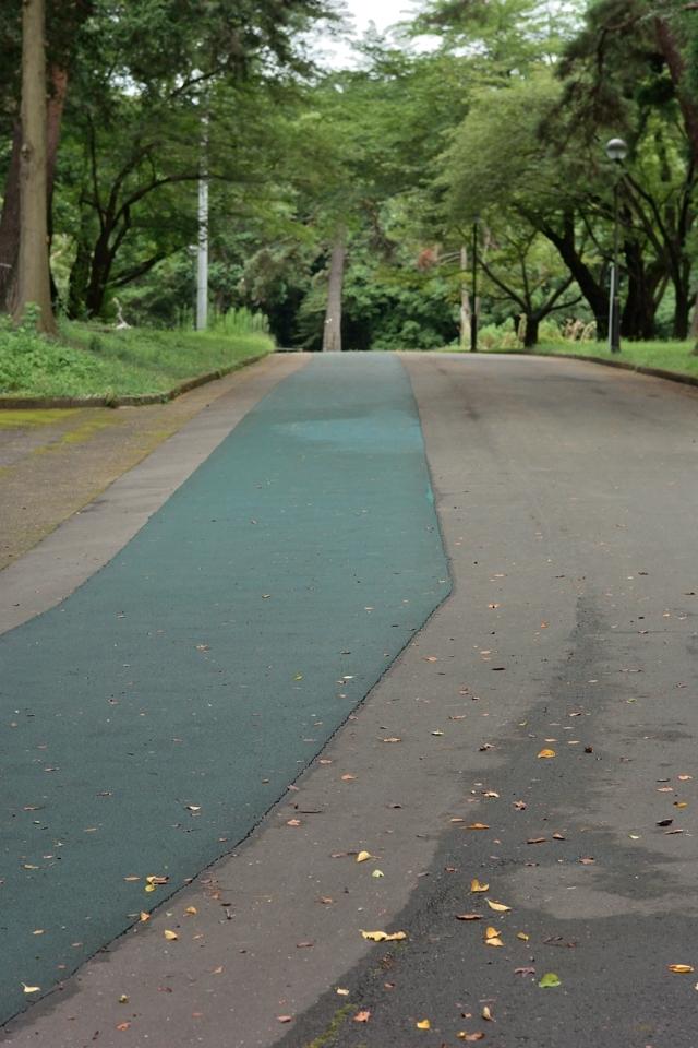 稲荷山公園 ランニング2.jpg