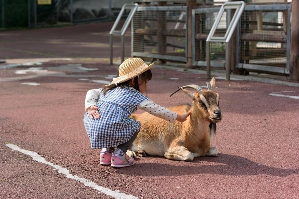 浜太郎 浜松市動物園2.jpg
