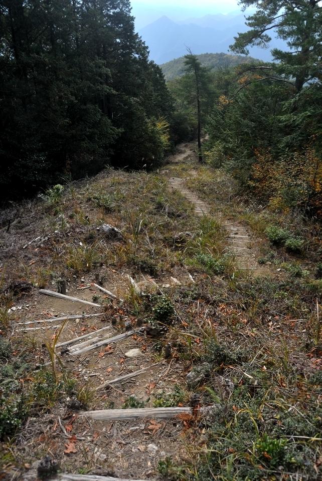 愛知県民の森トレイルランコース9.jpg