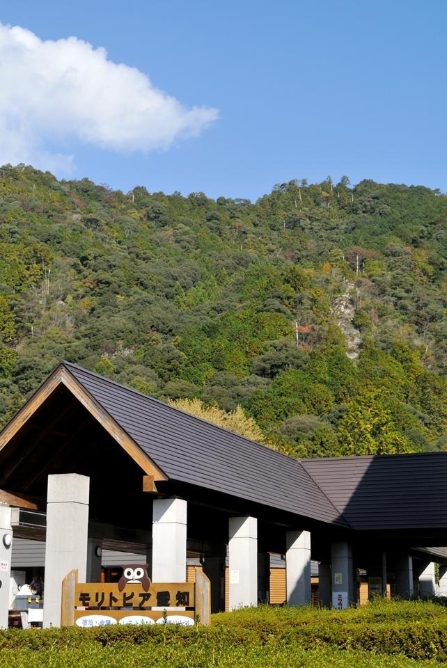 愛知県民の森トレイルランコース15.jpg