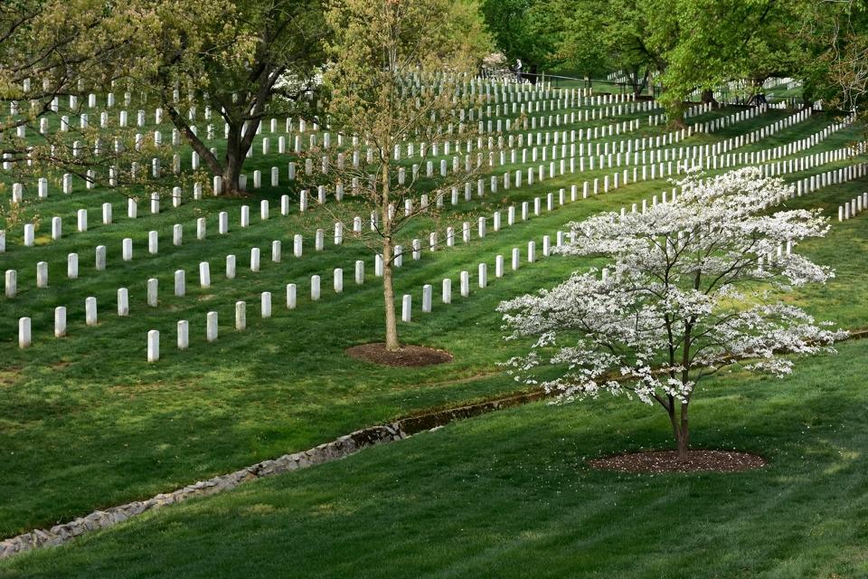 アーリントン墓地_写真1.jpg