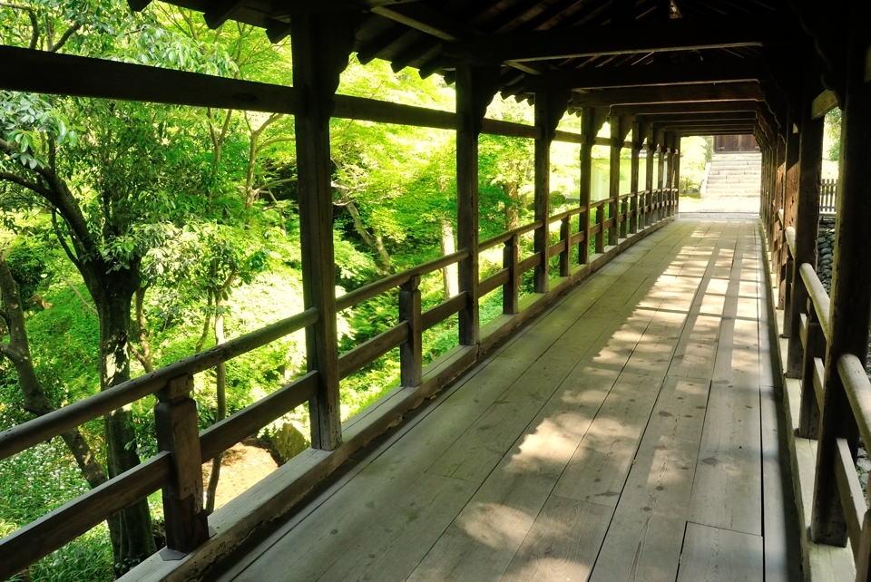 京都一周トレイルランニング東山コース4.jpg