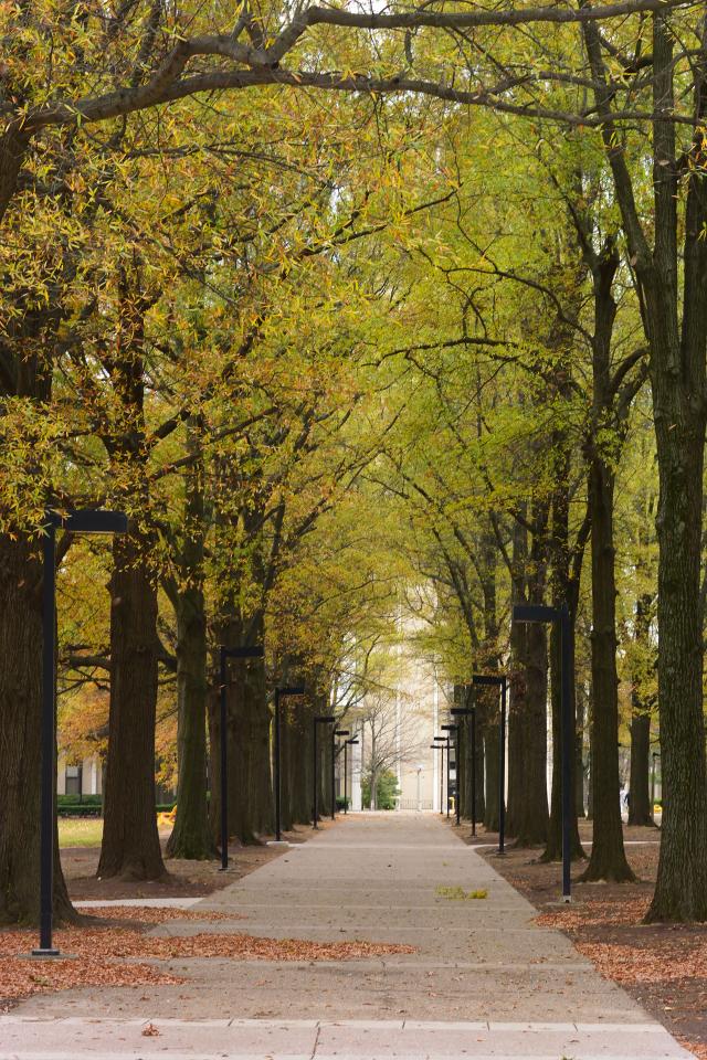 ケンタッキー大学ランニング2.jpg