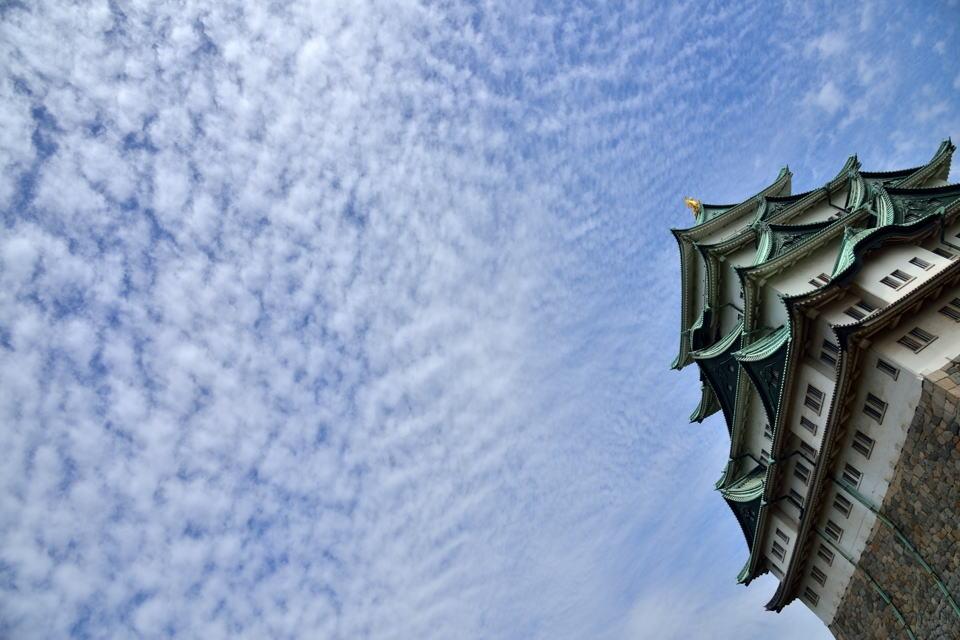 名古屋城_桜画像5.jpg