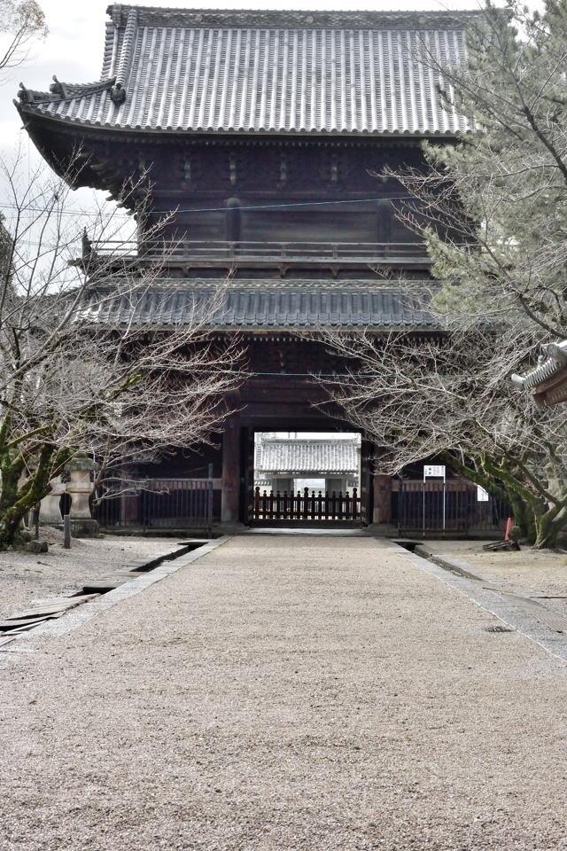 岡崎城ビスタライン2.jpg