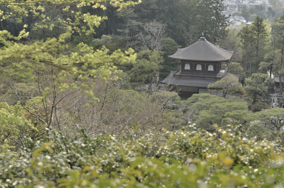 Ginkakuji_Photo1.jpg