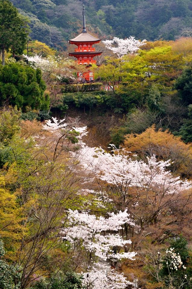 清水寺画像3.jpg