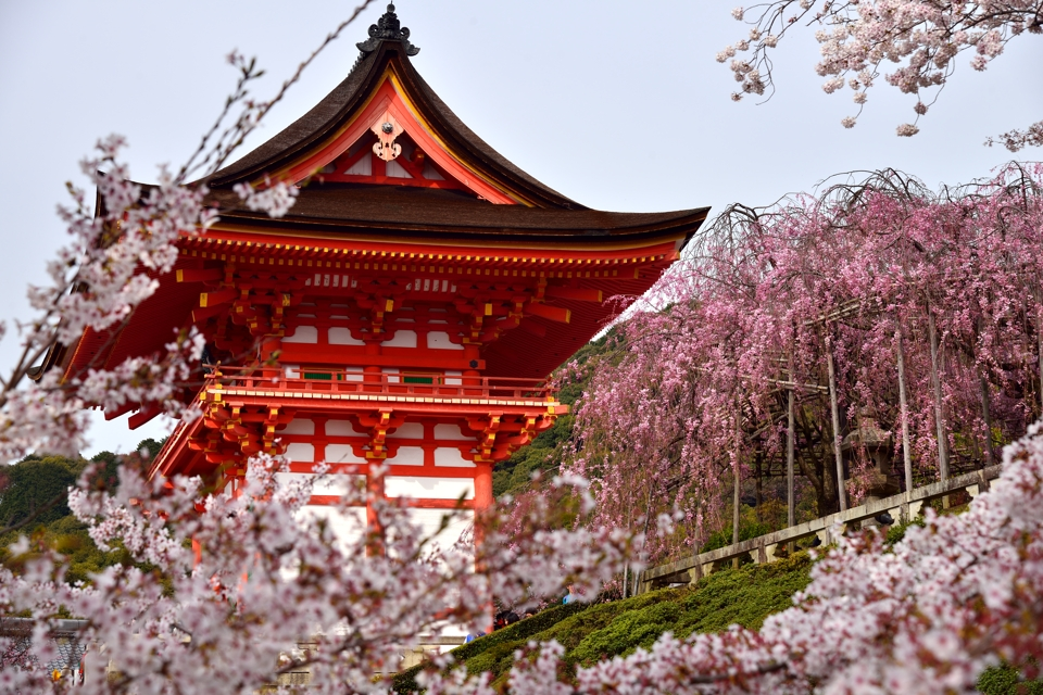 清水寺画像11.jpg