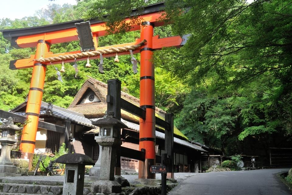 京都一周トレイル_西山コース11.jpg