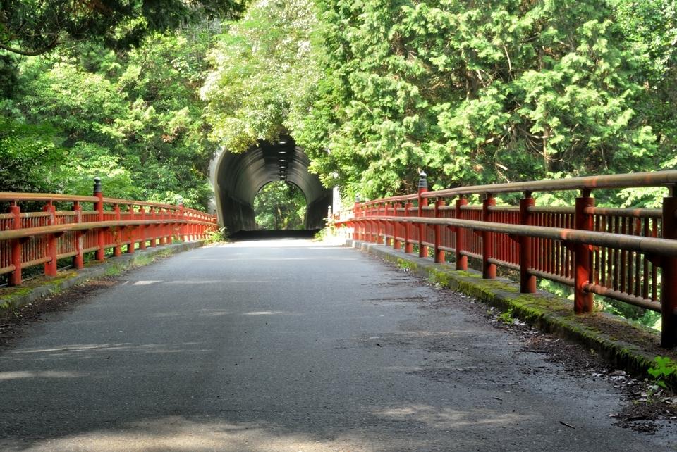 京都一周トレイル_西山コース14.jpg