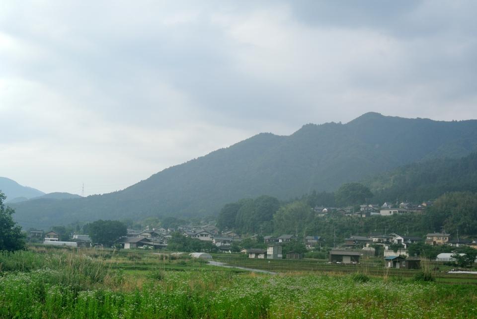 京都一周トレイル_西山コース41.jpg