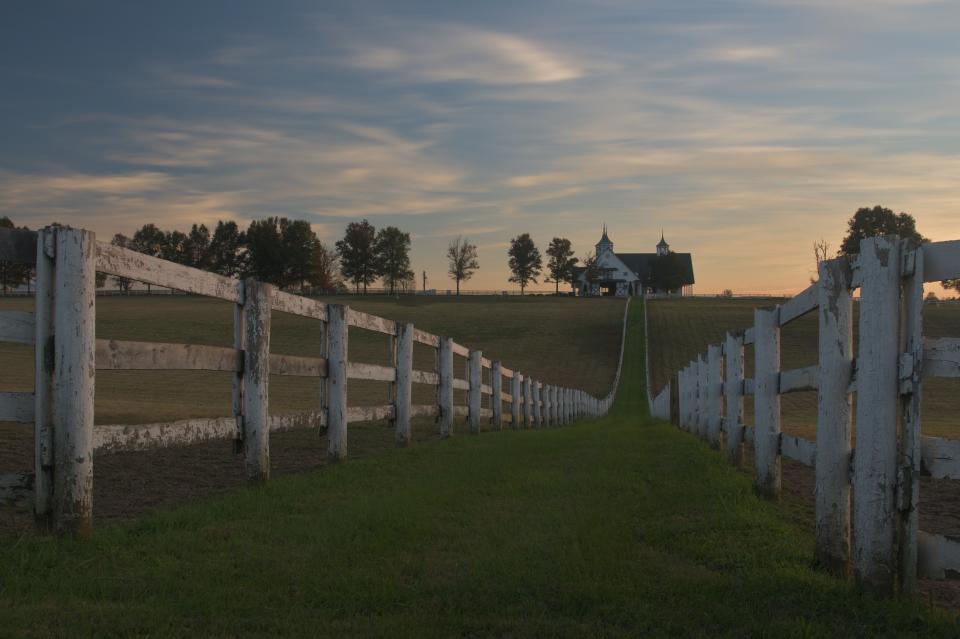 レキシントン牧場写真1.jpg