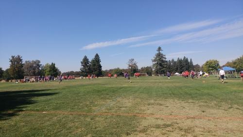 Regionals_Field.jpg