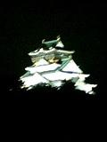 20061007_250587.jpg