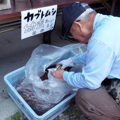 椎茸5.JPG