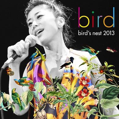 bird nest S.jpg