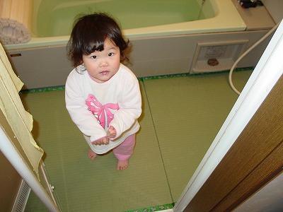 お風呂が楽しくなる畳 丸洗い可能たたみ