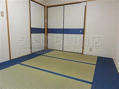 極太(GOKUBUTO)×デニム デザイン敷きを楽しむ きなり畳施工事例。縁無し琉球畳・へり付き畳・介護畳・お風呂畳・ペット畳のうえむら畳18